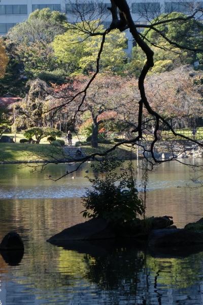 koishikawakourakuen6.jpg