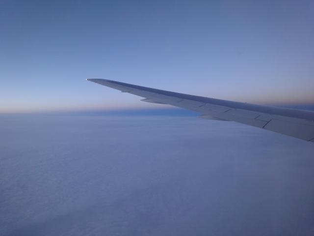 flight20111130.jpg